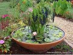 Water Garden Container Water Garden Ideas Unseen Pictures 4 You