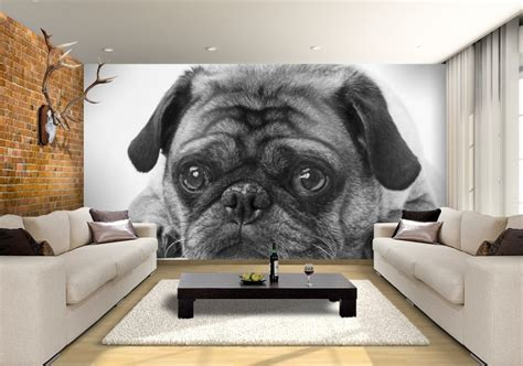 black white pug custom wallpaper mural print  jw