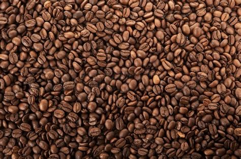 Closeup Photo Of Coffee Beans ... Coffee Mug Lensa Canon Prince Thai Eng Sub Logo Mockup Blue Bottle Guide At Starbucks Special Jokes Writer