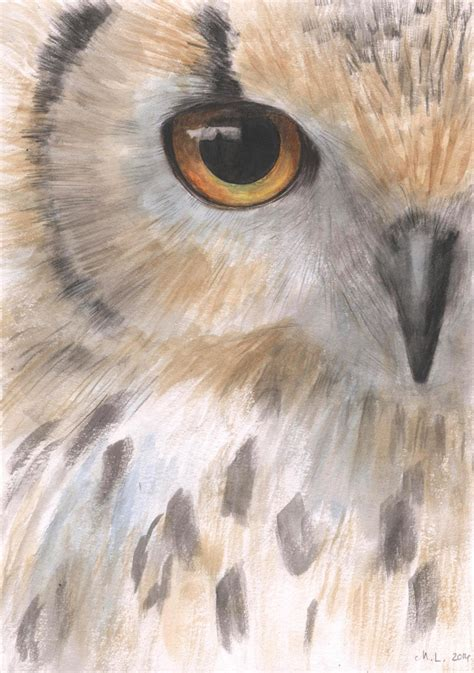 owl eye painting watercolor