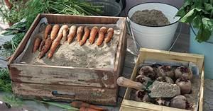 Gemüse Richtig Lagern : gem se richtig lagern mein sch ner garten ~ Whattoseeinmadrid.com Haus und Dekorationen