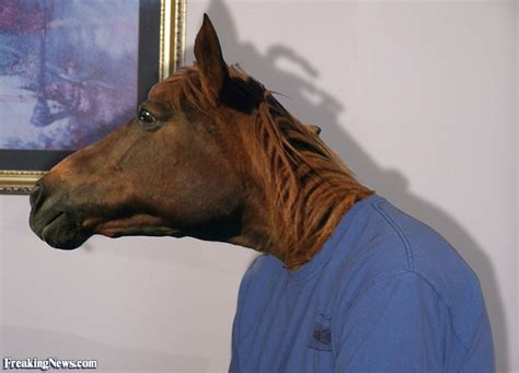 horse human hybrids horses around horsing face contest options freaking freakingnews