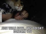 Creepy Scary Cat Meme