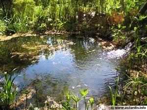 Bulleur Pour Bassin : les trucs divers pour le bassin ~ Premium-room.com Idées de Décoration
