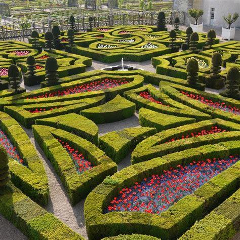 la pyrale du buis ch 226 teau et jardins de villandry