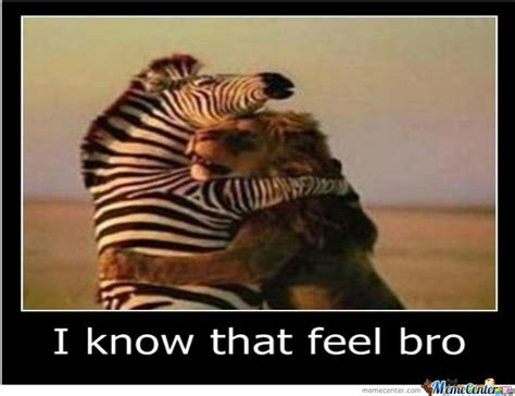 I Know That Feel Bro Meme - i know that feel bro by aske meme center