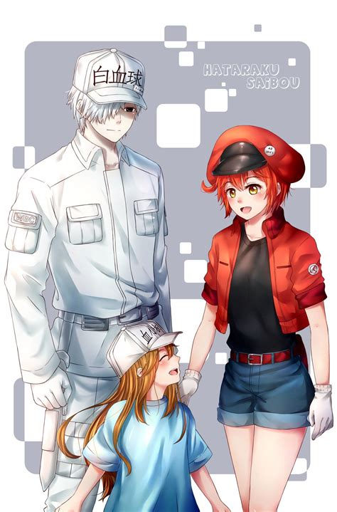 cells  work wallpapers high quality