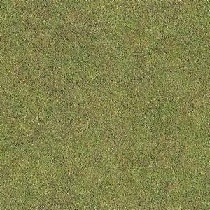 Seamless Golf Green Grass Texture + (Maps)   Texturise ...