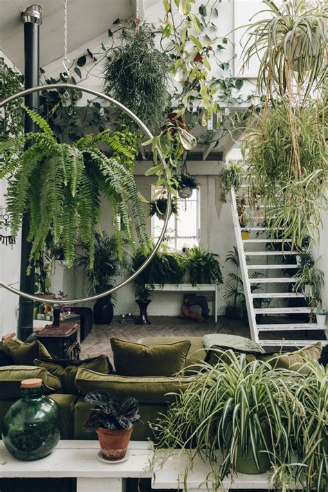 Garden Room Decoration by 25 Best Plant Rooms Ideas On Plants Indoor