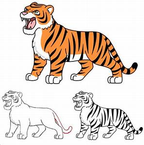How To Draw A Cartoon Tiger  Tiger  Cartoon  Illustration