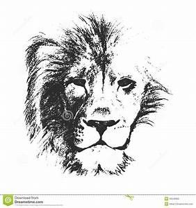 Lion Head. Hand Drawn. Vector Illustration Stock Vector ...