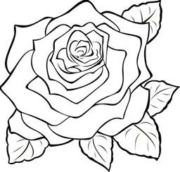 Rose Outline Clip Art