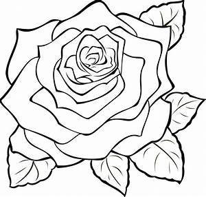 Black Rose Clip Art - Cliparts co