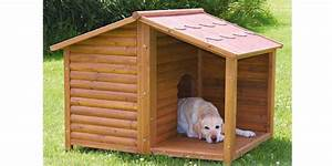 Niche Pour Chien Avec Terrasse : niche pour chien en pin lasur natura avec terrasse ~ Dailycaller-alerts.com Idées de Décoration