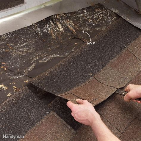 how to find leak in roof 12 roof repair tips find and fix a leaky roof family handyman