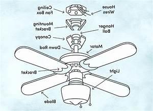 Parts Of Ceiling Fans