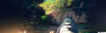 Totoro Neighbor Dual Wide