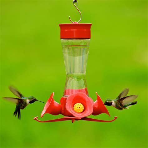 pet hummingbird for pet 203cpbn pinch waist glass hummingbird feeder 912