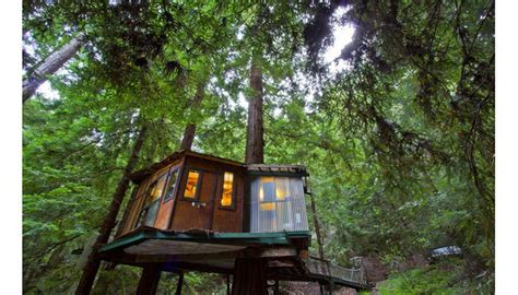 tree house hotel redwood forest tiny homes for rent 3 cool getaways in the woods curbed