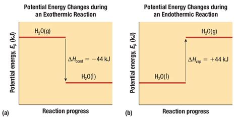 Energy Changes In Chemical And Nuclear Reactions Biology