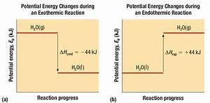 Energy Changes In Chemical And Nuclear Reactions
