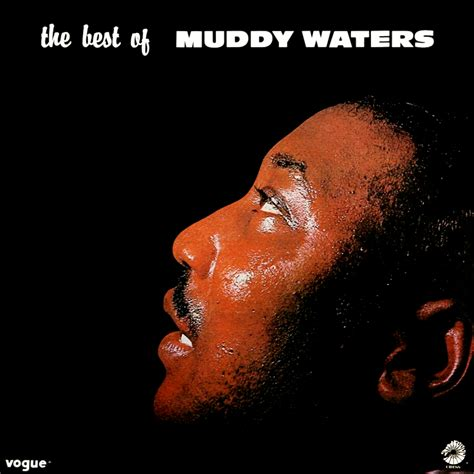 The Best Of Muddy Waters Muddy Waters Fanart Fanart Tv