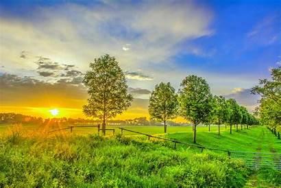 Bright Landscape Sunset Tree Sky Summer Nature