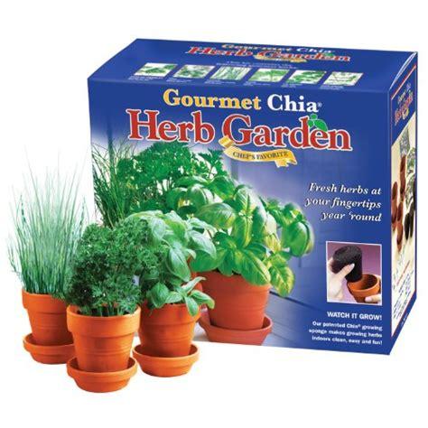 chia herb garden chia gourmet herb garden