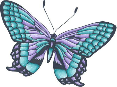 Flowers And Butterflies Drawings