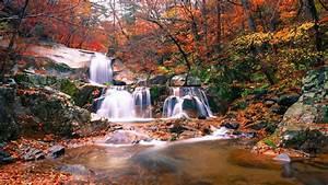 Wallpaper, Waterfall, Autumn, 5k, Nature, 20234