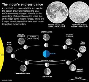 Earth's Moon Phases, Monthly Lunar Cycles (Infographic)