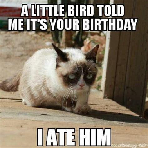Best Of Grumpy Cat Meme - 20 best grumpy cat memes that will surely make you smile sayingimages com