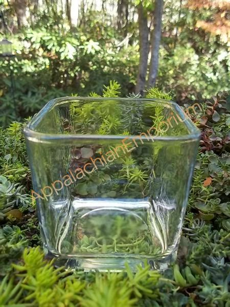 Square Glass Container For Terrariums, Mini Gardens