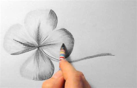 ein kleeblatt zeichnen