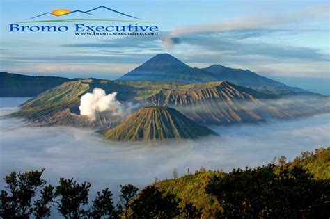 bromo executive abadi  travel yoshiwafa