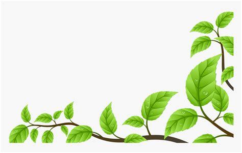 trends ideas background daun hijau png finleys beginlys