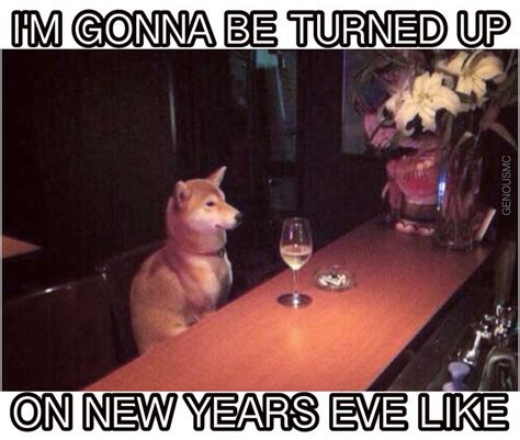Funny New Years Eve Memes - best 25 new years eve meme ideas on pinterest new years memes dashing through the snow and