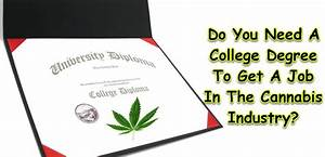 Do You Need A College Degree To Get A Job In The Cannabis ...
