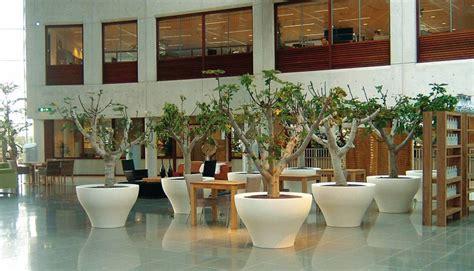 vasi per terrazzi vasi ming per un tocco di design anche alla tua