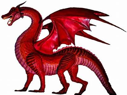Dragon Club Mascot Cola Pngimg