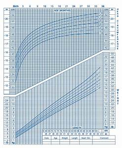 7  Baby Growth Chart Week By Week Templates