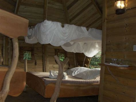 chambre d hotes insolite chambre d 39 hôtes guadeloupe vacances cabane arbre