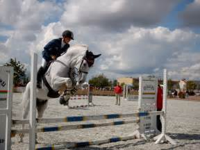 File:Showjumping white horse jpg