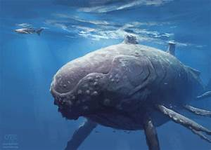 Megalodon-real life Jaws - Page 5 - Bodybuilding.com Forums