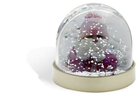 photobooth software christmas snow dome pack of 36