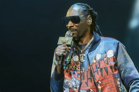 Snoop dogg) — американский рэпер, продюсер и актёр. Snoop Dogg Is 'Definitely' Going to Vote for the First Time in 2020: 'I Can't Stand to See This ...