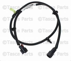 Brand New Oem Mopar Under Hood Light Wiring Harness 2004
