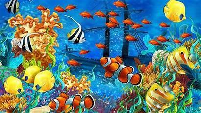 Fish Tropical Desktop Colorful Coral Wallpapers Shipwreck