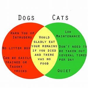 A Venn Diagram To Help You Decide If You Should Get A Dog