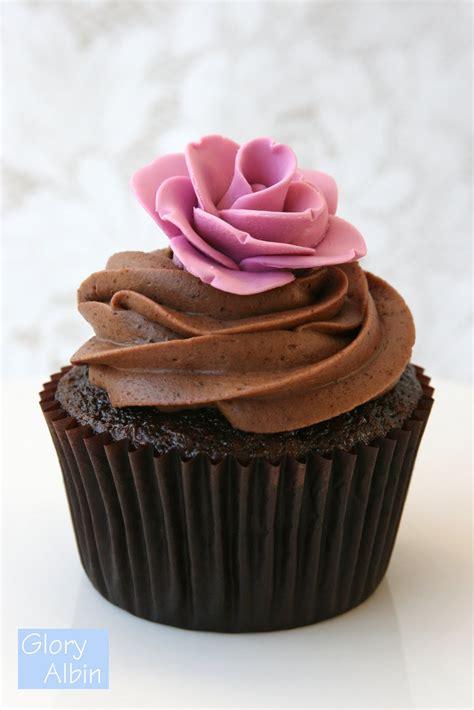 chocolate cupcakes chocolate cupcakes cupcakes